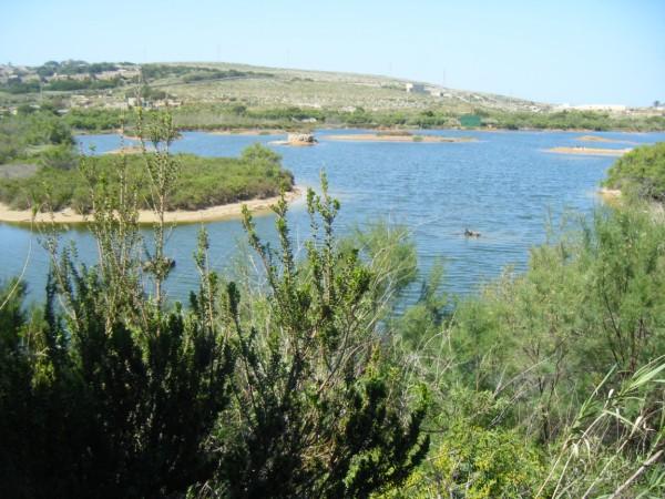 Ghadira Nature Malta